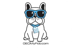 Ad design for GEO My Fido